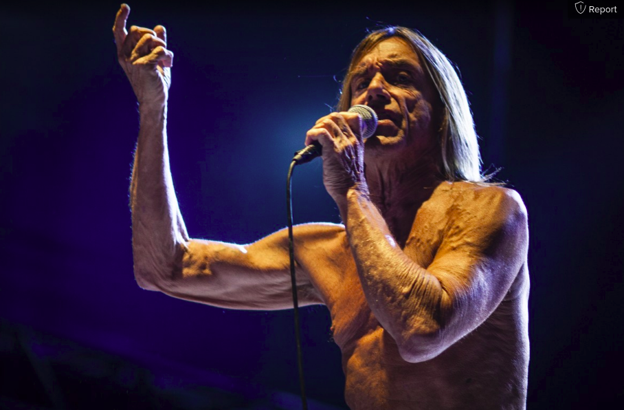 Iggy pop live pxhere didy photography